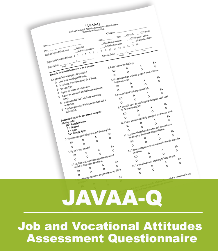 Job and Vocational Attitudes Assessment Questionnaire