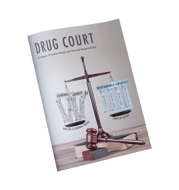 Drug Court Journal